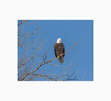 American Bald Eagle 2015-8 Unisex T-Shirt