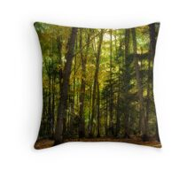 Colorful Underwood Throw Pillow