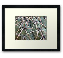 New Mexico Cactus Framed Print