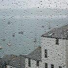 Rain  by Carl Gaynor