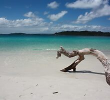 Jervis Bay Drifting by Sandra Degrassi