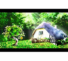 Jael's Fruit Photographic Print