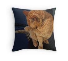 Oliver's shy Throw Pillow