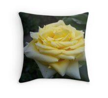 Ari's NATURE EYE: .. CREATING LOVE Throw Pillow