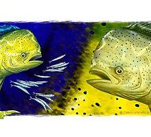 Mahi Mahi on blue & yellow by David Pearce
