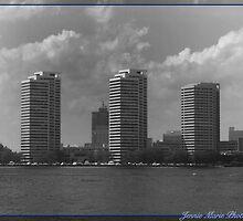 I Like the City Life by J.C  Photography