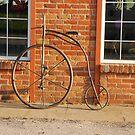 Old Bike by Mary Carol Story