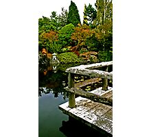 Pond Photographic Print