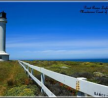 ~ Point Arena Lighthouse, Mendocino Coast of California ~ by WesternDreamer