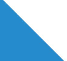 Flag of Canton of Zurich by tony4urban