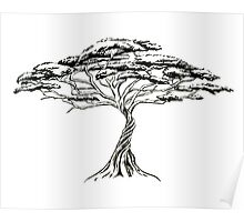 Whistling Thorn , Zen Bonsai African Tree Black and White Poster