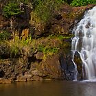 Waimea Falls by Barbara  Brown
