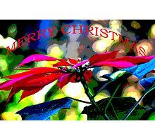 Poinsettia Merry Christmas Card Photographic Print