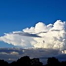 Evening Sky by Richard Hamilton-Veal