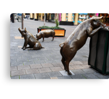 Rundle Mall Pigs Canvas Print