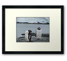 Penguin I Framed Print