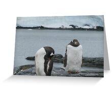 Penguin I Greeting Card