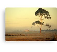 A red roof in Gippsland Canvas Print