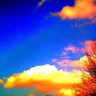 Sunset by Jennifer  Hammann
