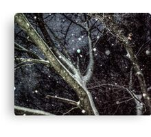 Trees In The SnowStorm Canvas Print