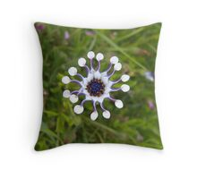 Whirligig Throw Pillow