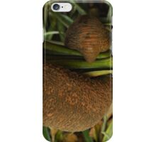 Elephant Grabbing a Bite to Eat iPhone Case/Skin
