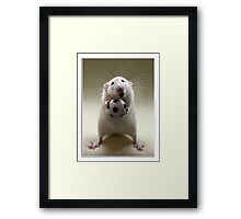 Learning how to play soccer. Framed Print