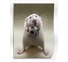 Learning how to play soccer. Poster