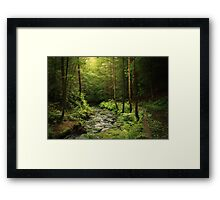 Loki's Forest Framed Print
