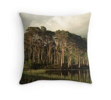 Scots Pines in the evening light. Throw Pillow