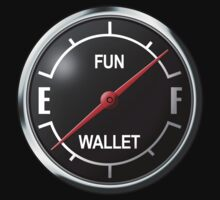 The Fun Gauge by g1crum