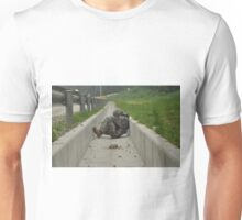 Just Let Me Sleep SGT T-Shirt