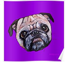 Butch the Pug - Purple Poster