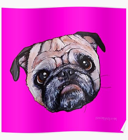 Butch the Pug - Pink Poster