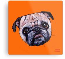 Butch the Pug - Orange Metal Print
