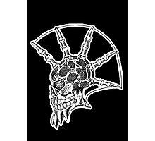 Punk Skull - bordered Photographic Print