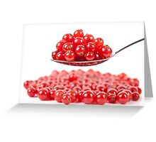 Red currant on white background Greeting Card