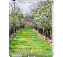 Orchard of plum trees iPad Case/Skin