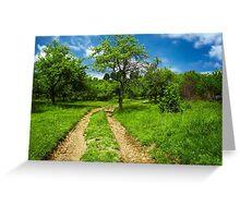 Rural road through meadow Greeting Card