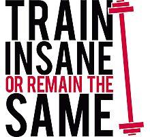 Train insane or remain the same. Photographic Print