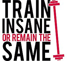 Train insane or remain the same. Photographic Print