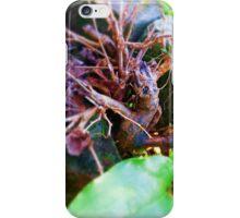 Spirit of the Wood iPhone Case/Skin