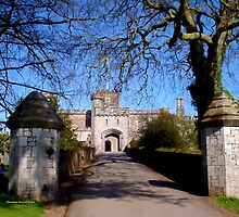 Entrance to Powderham Castle by Charmiene Maxwell-Batten