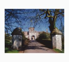 Entrance to Powderham Castle Kids Clothes