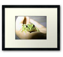 Kermit the Frog Framed Print