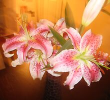 Lilies by bellamama