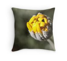 ~There you are!~ Throw Pillow