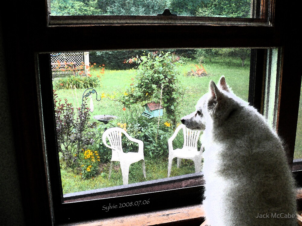 Sylvie at the Kitchen Window | I'm home girl!! by Jack McCabe