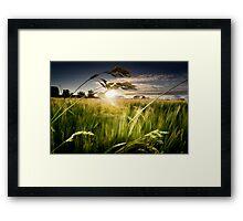 Green Isle Sunset Framed Print