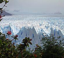 Perito Moreno Glacier, Calafate - Argentina by John Kardys